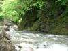 20110513kesiki1