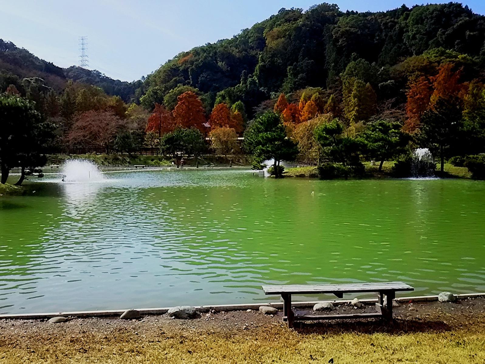 20171101_kesiki3_2