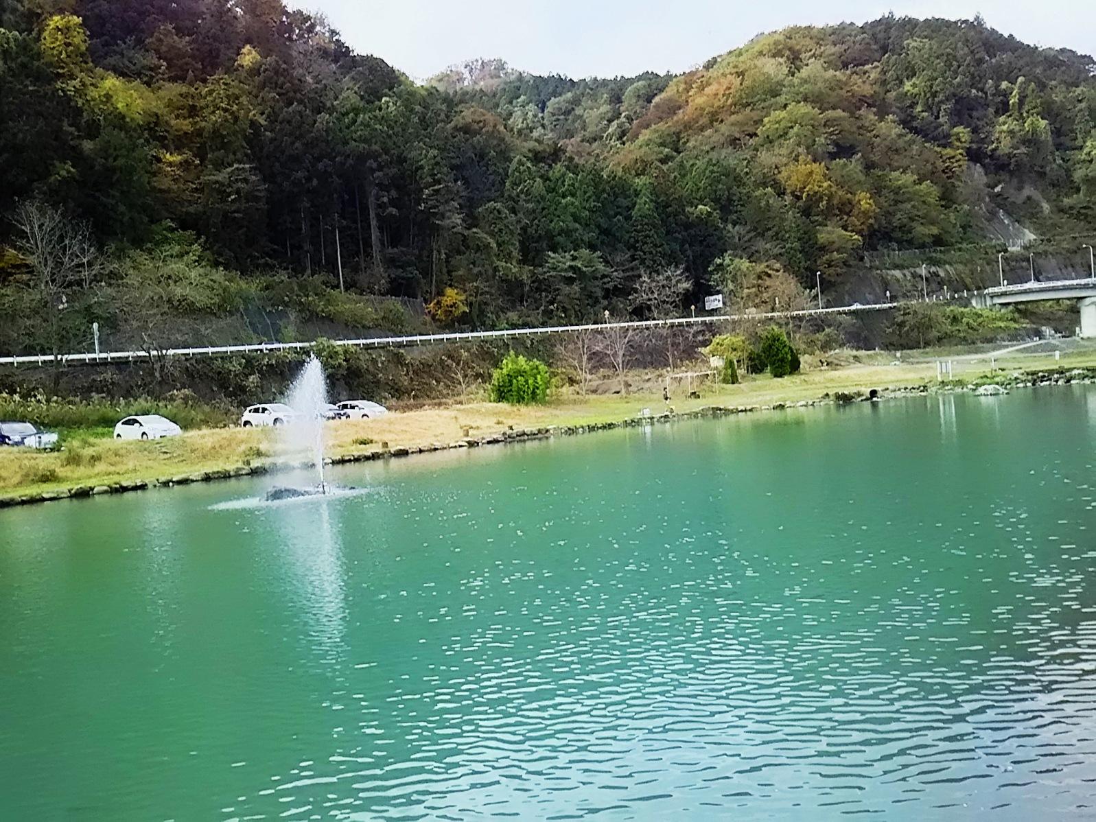 20171122_kesiki