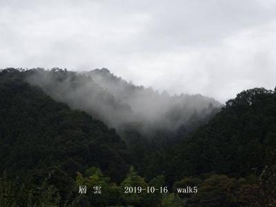 20191016-walk5