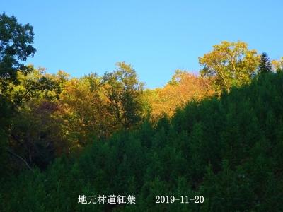 B1120191120-rin1